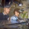 Шведские ученые научились получать энергию с помощью тени от листьев дерева