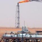 Узбекистан впервые раскрыл данные о добыче нефти и газа