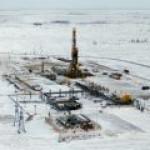 Индия может войти в проекты по добыче в Сибири и на Ямале