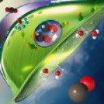 Американские ученые доказали: из искусственных листьев можно производить кислород