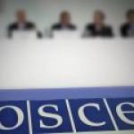 """В ПА ОБСЕ не поняли позицию стран Прибалтики и Украины по """"Северному потоку-2"""""""