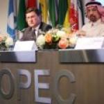Свершилось: страны ОПЕК+ подписали хартию