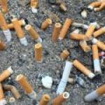 Сигаретные фильтры могут погубить растительность планеты