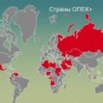 Альянс ОПЕК+ ничего не будет делать до 1 мая