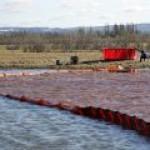 Загрязнение реки в Норильске все еще сильно превышает ПДК