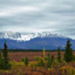 Аляска будет биться с Байденом за право на новое бурение