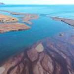 Причиной экокатастрофы на Камчатке стал перегрев воды