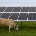 Агроэнергетика объединит сельское хозяйство и солнечные фермы