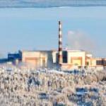 Арктические и дальневосточные ТЭС смогут работать на опилках