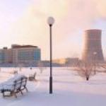 Литва пытается бойкотировать энергию БелАЭС, но не выходит