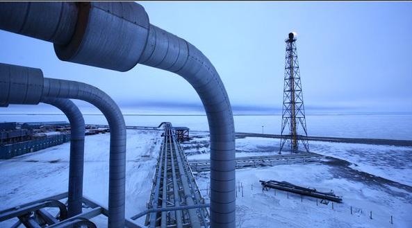 Arctic neft oil
