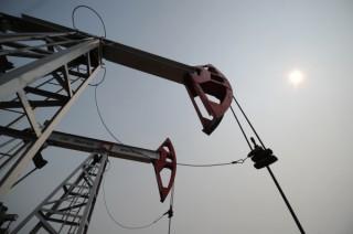 mestorojdenie neft oil kachalka