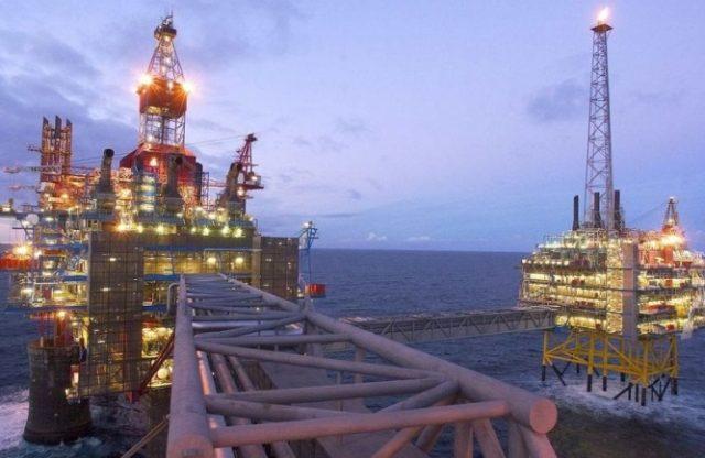Shelf Neft Oil Burov