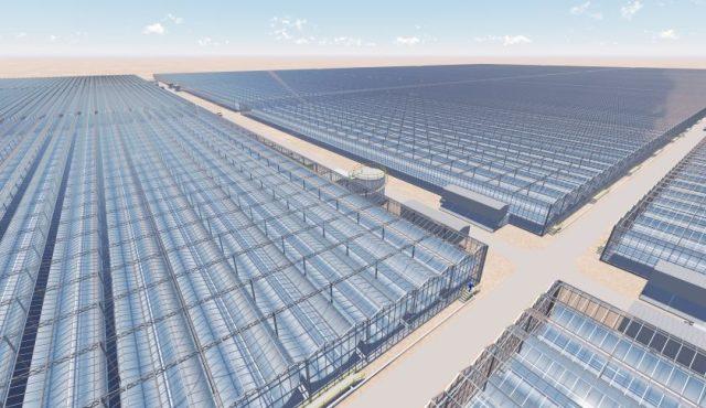miraah_solar-energy