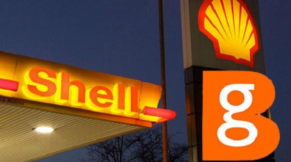 Shell_BG