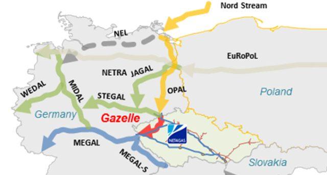 OPAL_Gazelle