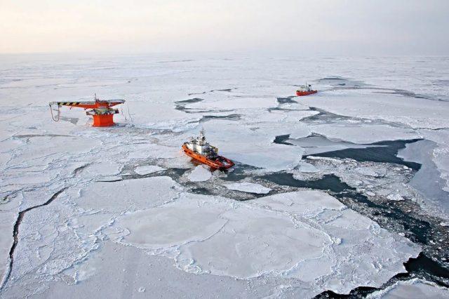 arktica-1