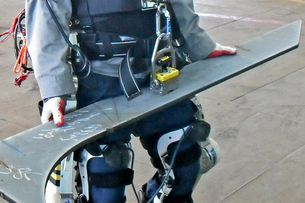 Exoskelet