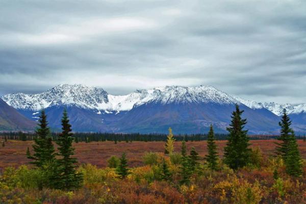 Аляска заповедник США